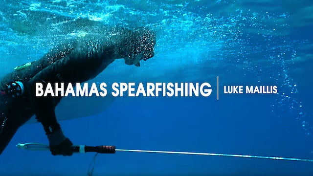 Bahamas Spearfishing | Luke Maillis