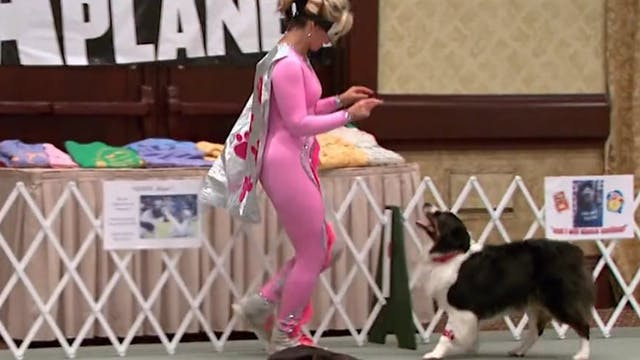 Dancing with Dogs!: WOW Presents Clip...
