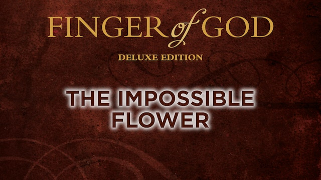 The Impossible Flower