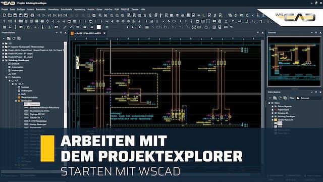 Arbeiten mit dem Projektexplorer