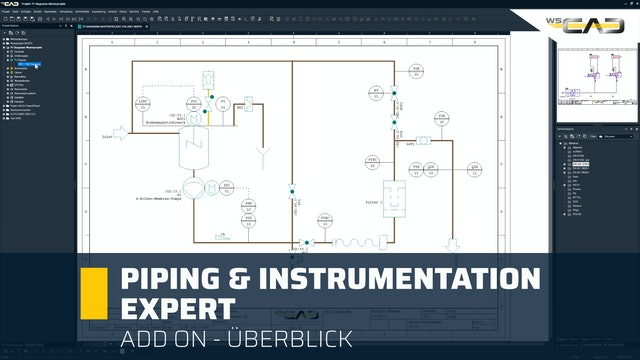Piping & Instrumentation Expert