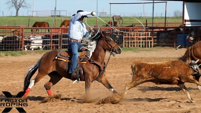 How to Get Timing From Your Horse with Joseph Harrison