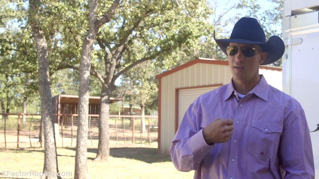 Training Your Horse to Face with Brock Hanson