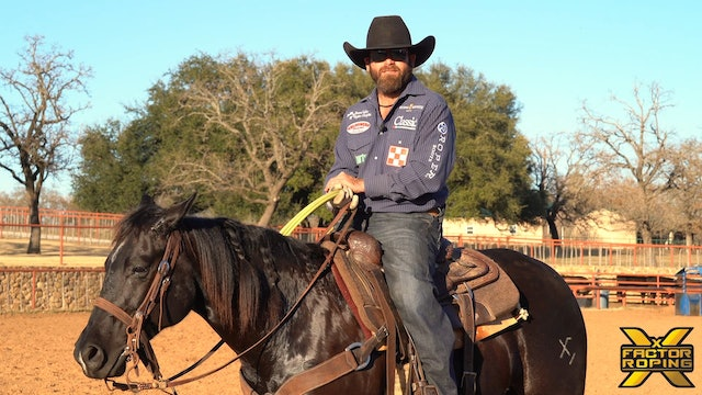What To Focus On When Training Your Newer Horses with Ryan Motes