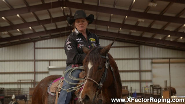 Using The Heel O Matic To Help Your Horses While Facing with Lari Dee Guy