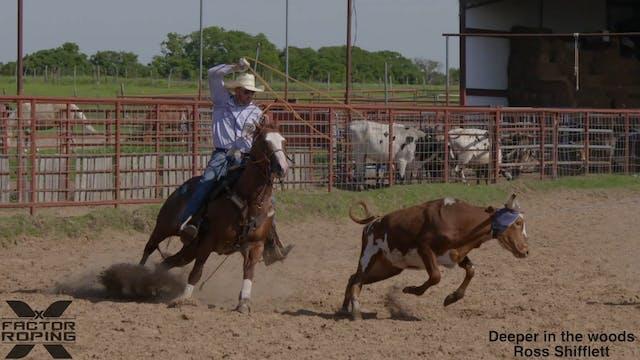 What Type Of Heel Horse Prospect Jose...