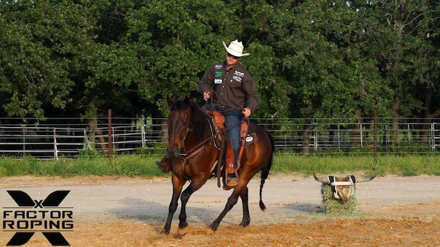 Working with your Horse on a Clean Healthy Stop with Buddy Hawkins