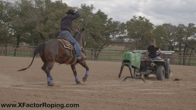 Training Yourself to Guide Your Horse...