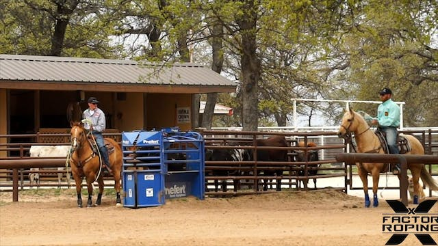 Creating Guidance for Your Horse with...