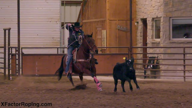 Helping Your Horses Stop with Lari De...