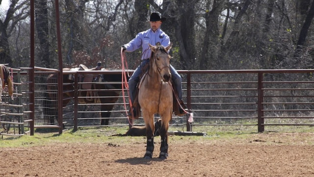 Trey Johnson - Letting Your Heel Horse Trickle Out On Score Steers