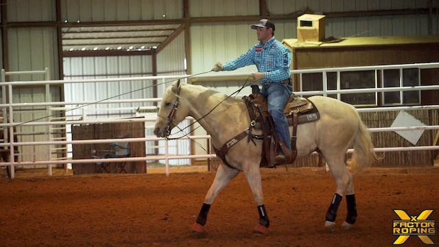 Practicing for Your Horse with Tyler ...