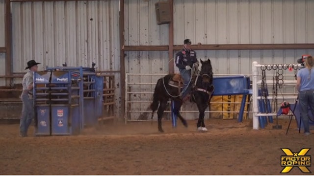 Tyler Wade's Strategy For Controlling Your Horse In The Box