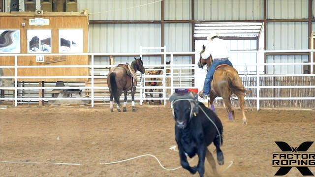 Keeping Your Horse Hunting the Hip wi...