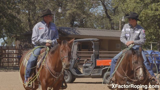 The Value of Horsemanship with Marty ...