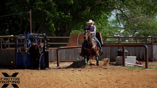How To Teach and Keep Your Head Horses In Position with Cody Snow