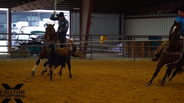 Framing Your Horse Up with Paden Bray
