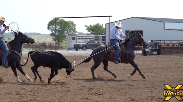 Tricks to Teaching Your Horse to Face with Casey Hicks