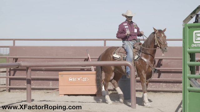 Horsemanship In The Box For Jackpots with Cesar De La Cruz