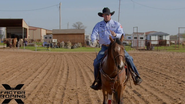 Picking Up your Horse with Joseph Harrison