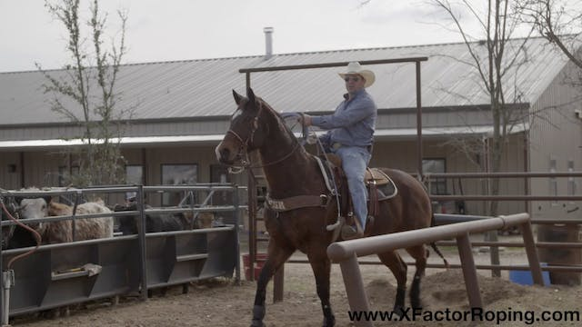 Horsemanship Drills In The Box with C...