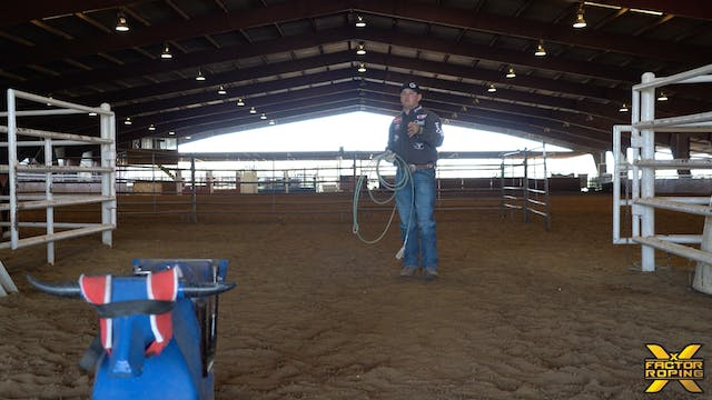 Setting Your Horse and Heeler Up For ...
