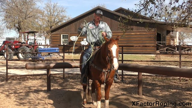 Lane Position and Horsemanship In The...