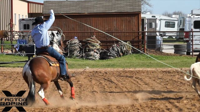 Training A Green Heel Horse with Jose...