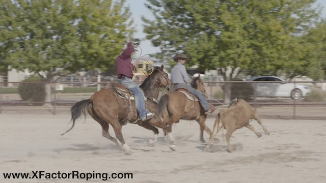 Maintaining Your Heel Horse In The Ru...