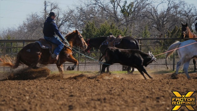 Most Common Mistakes Heelers Make with Hunter Koch
