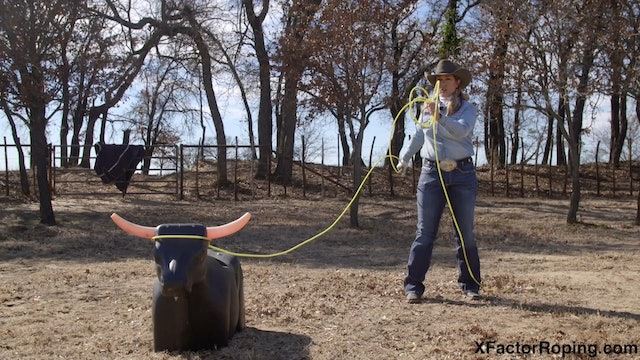 Handling Cattle with Jackie Crawford