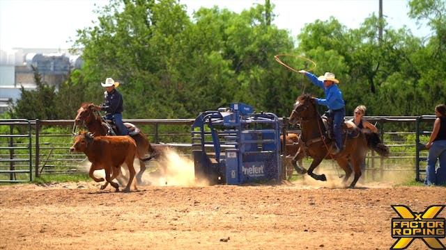 Tips On Handle Cattle and Facing with...
