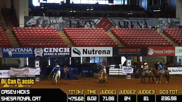 2019 America Rope Horse Futurity Head...