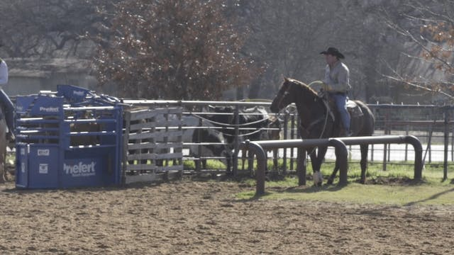 Rein Pressure and Relaxing Your Horse...