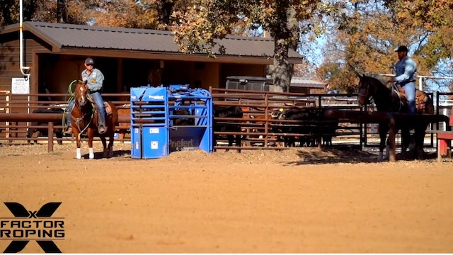 Positioning Your Horse in the Box with Marty Becker
