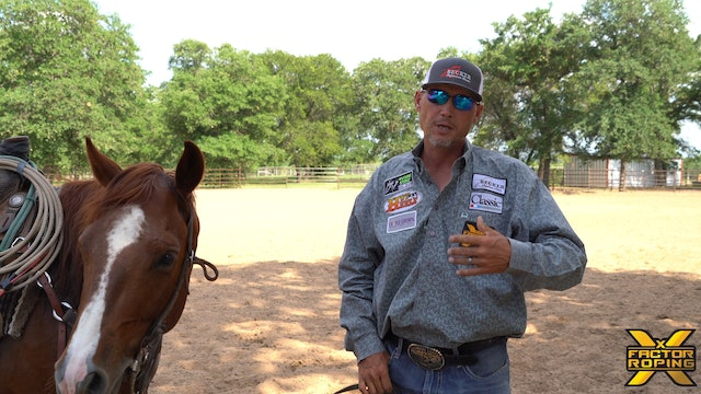 Keys to Keeping Your Horse Relaxed In The Box with Marty Becker