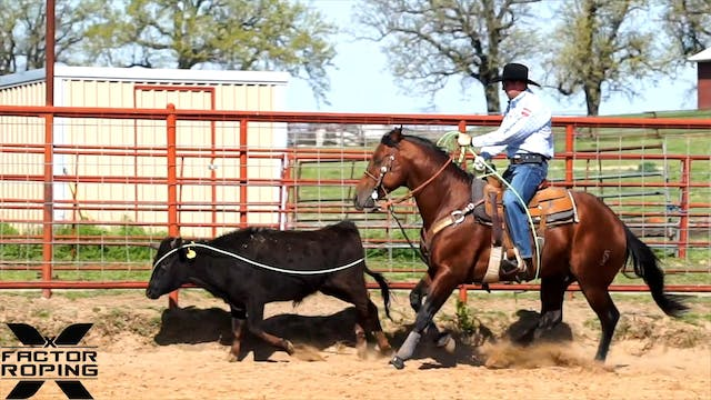 4 Year Old Head Horse Training with J...