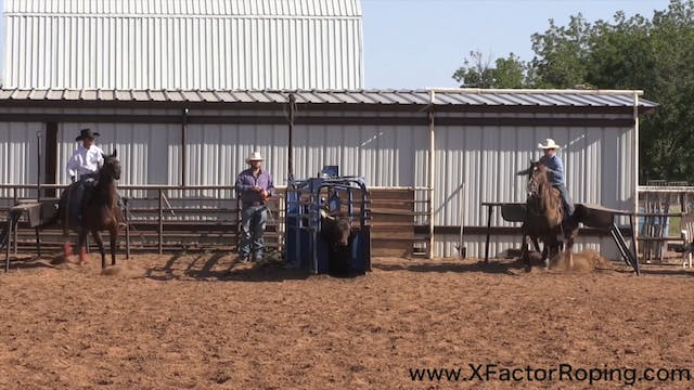 Gaining Trust in Your Heel Horse with...