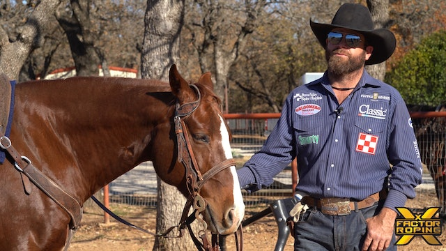 Ryan Motes' Advice for Heelers Wanting To Take That Next Step Professionally