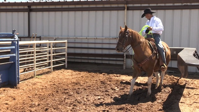 Dealing with Horses That Spin Out in the Box with JoJo Lemond