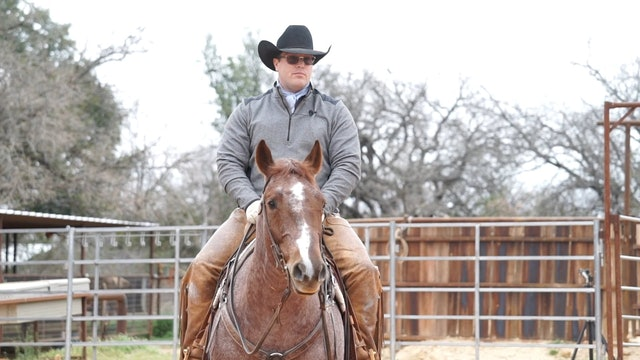 Getting your Horse Behind the Bridle with Rhett Baker