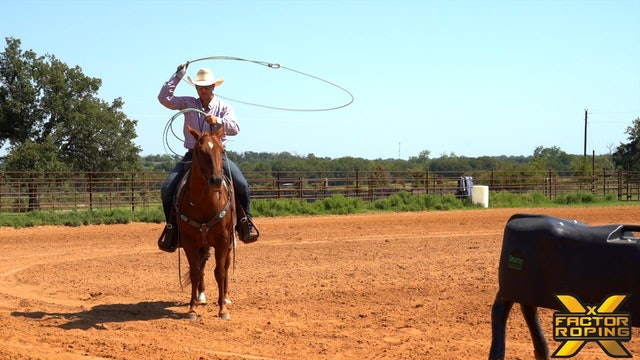 Buddy Hawkins and Tips On How To Improve Every Horse You Rope On