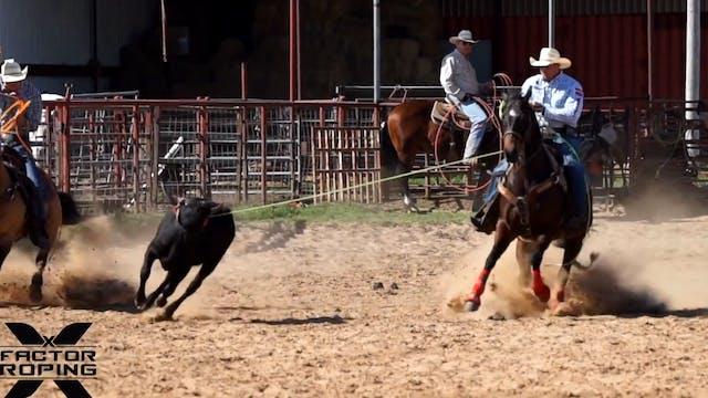 Head Horse Training with Joseph Harrison