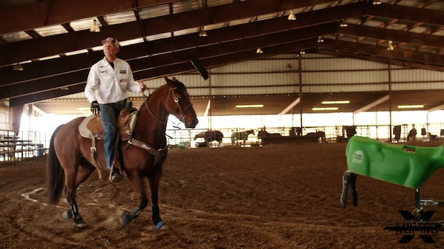Position Going Down the Arena with Allen Bach