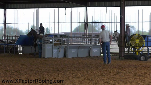 Controlling Your Horse's Feet With Ja...