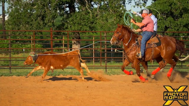 Common Mistakes While Training Horses...
