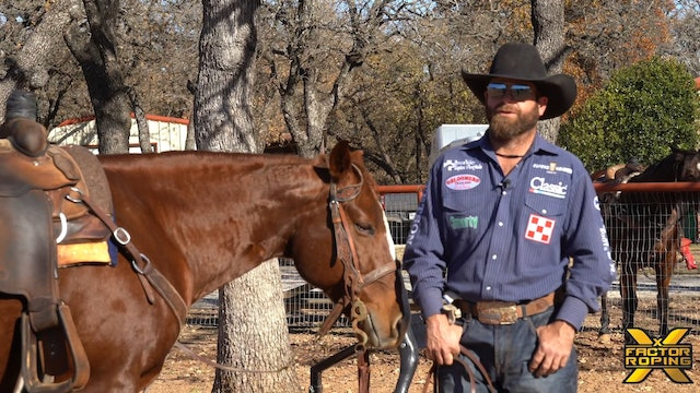 What Makes A Heeler A Winner According to Ryan Motes