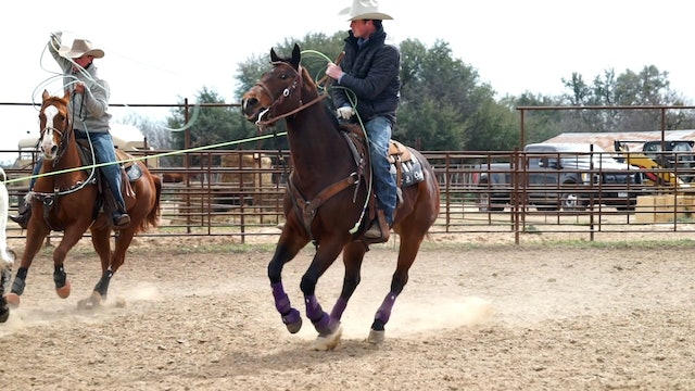 Keeping Solid Control of your Horse with Lane Ivy