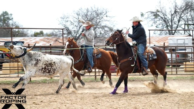 Finding Confidence for Your Horse wit...