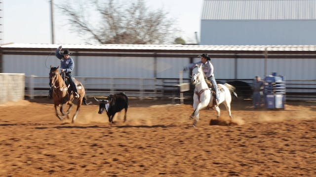 Helping Your Horse Handle Cattle Bett...